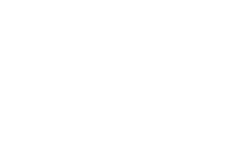 Logo Lanana' Digitale